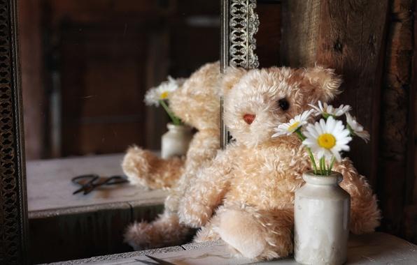 Игрушка картинка медведь