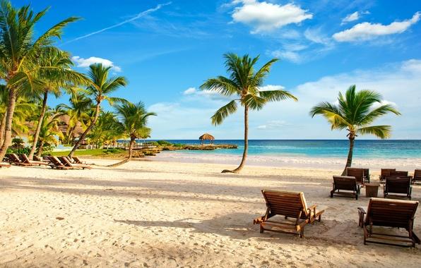 Картинка песок, море, пляж, тропики, пальмы, берег, summer, beach, sea, ocean, paradise, vacation, palms, tropical