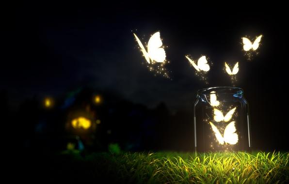Картинка макро, ночь, природа, земля, размытие, бутылки, grass, травы, nature, красивый, night, beautiful, macro, blur, темное …