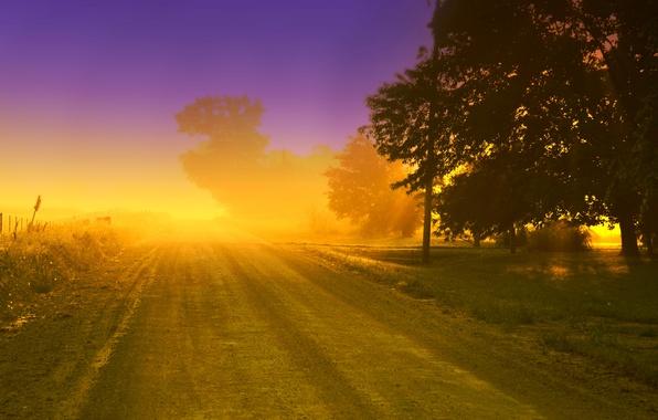 Картинка зелень, небо, трава, листья, солнце, облака, деревья, цветы, природа, фон, дерево, widescreen, обои, листва, забор, …