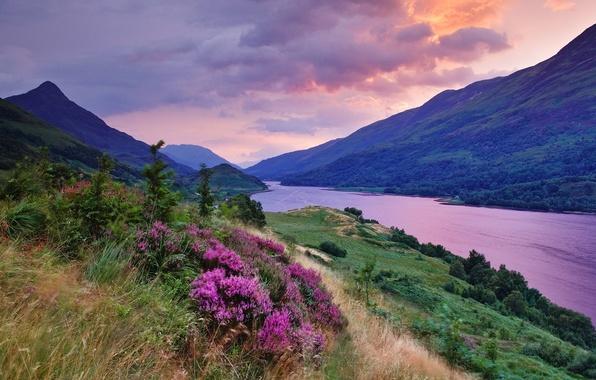 Картинка лето, трава, цвета, облака, закат, цветы, тучи, река, краски, равнины, насыщеность