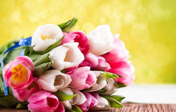 Картинка цветы, букет, тюльпаны, 8 марта