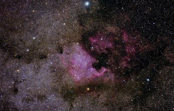 Картинка звезды, Туманность, Северная Америка, в созвездии Лебедь