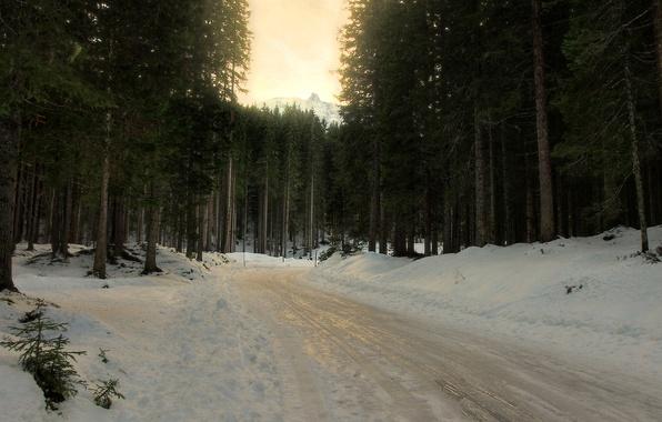 Картинка зима, дорога, лес, снег, деревья, ель, поворот, хвойные, слякоть