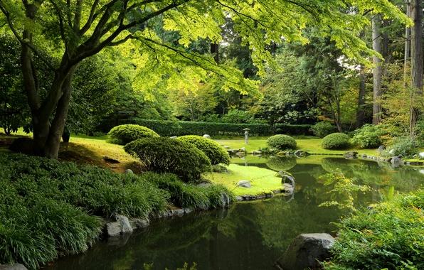 Картинка зелень, трава, деревья, пруд, парк, камни, Канада, фонарь, Ванкувер, кусты, Nitobe Garden