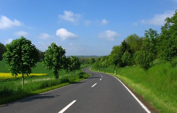 Картинка дорога, зелень, лето, небо, трава, асфальт, облака, деревья, разметка, поляна
