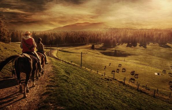 Картинка поле, лес, животные, пейзаж, люди, тропа, лошади, горизонт, пастбище, холм, железная дорога, наездники, всадники, высокогорье, ...