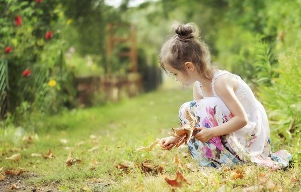 Картинка листья, природа, девочка