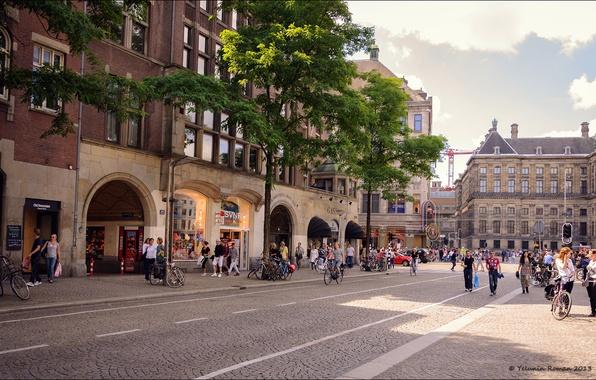 Картинка дорога, зелень, машина, солнце, свет, велосипед, жизнь, город, отражение, фото, люди, разметка, обои, здание, окна, …