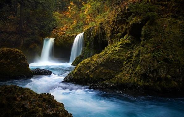 Картинка лес, природа, река, камни, водопад, мох