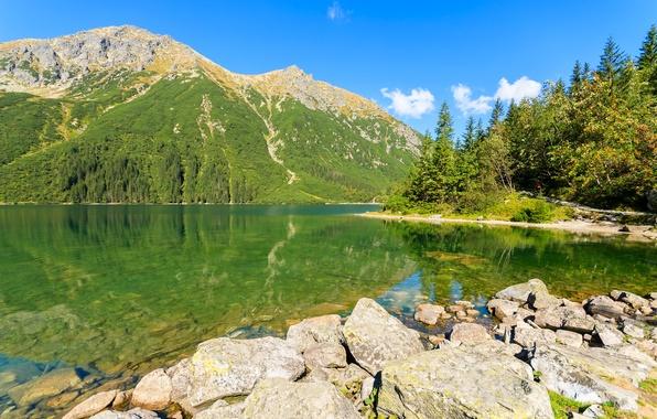 Картинка небо, вода, солнце, деревья, горы, озеро, отражение, камни, берег, Польша, Tatra Mountains