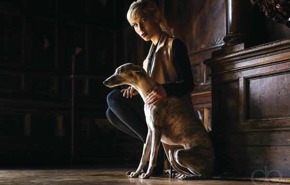 Картинка девушка, дом, собака