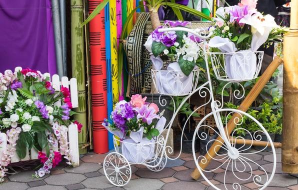 Картинка цветы, велосипед, букет, flowers, флористика