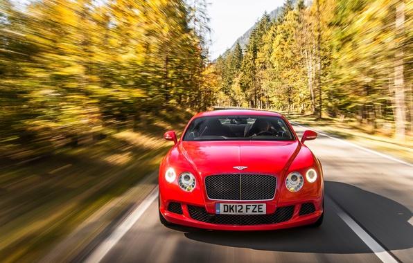 Картинка Красный, Авто, Bentley, Continental, Лес, Машина, Капот, Фары, Передок, В Движении