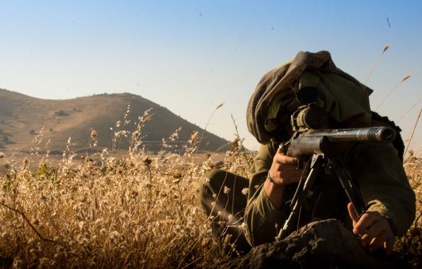 Картинка трава, снайпер, прицел, винтовка