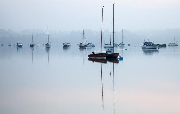 Картинка туман, озеро, тишина, лодки, утро, покой