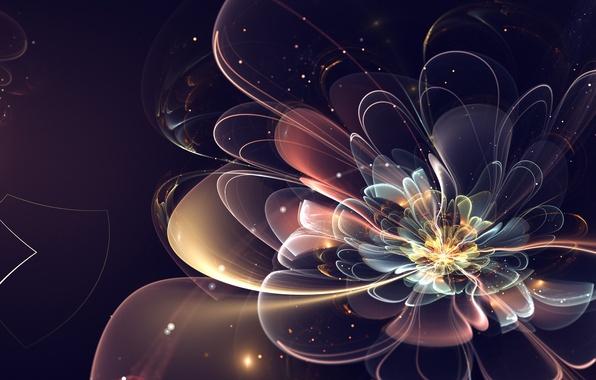 Картинка цветок, абстракция, фрактал