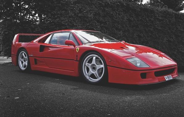 Картинка Красный, Машина, Ferrari, F40, Автомобиль, F 40