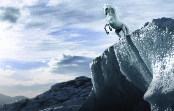 Картинка небо, взгляд, облака, скала, лошадь, высота, арт, грива, белая, копыта