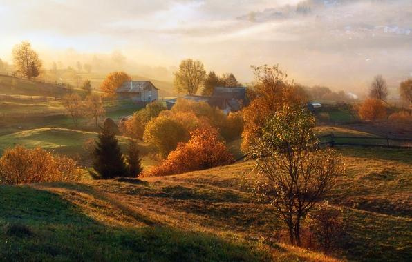 Картинка осень, солнце, деревья, туман, поля, простор, домики, заборы, огороды