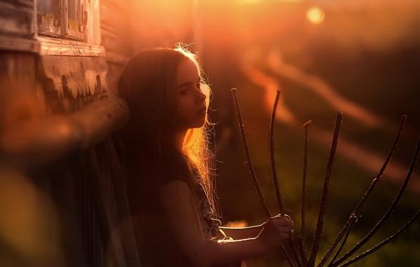 Картинка свет, дом, вечер, девочка