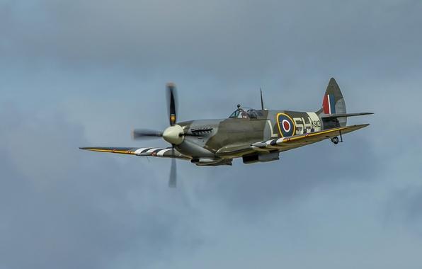 Картинка небо, полет, самолет, истребитель, пропеллер, Spitfire, разведчик, перехватчик, Supermarine