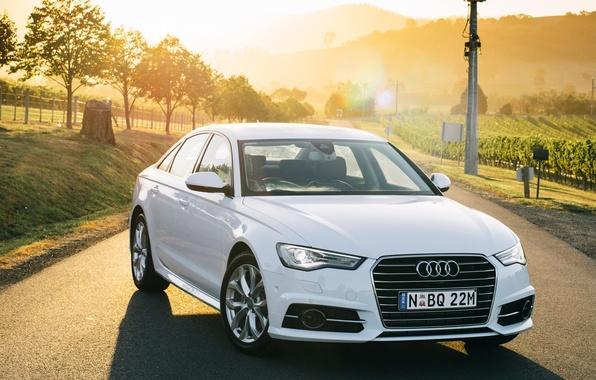 Картинка Audi, ауди, TDI, белая, седан, quattro, Sedan, кватро, AU-spec, 2015, S line