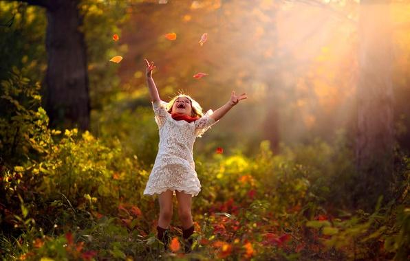 Картинка осень, лес, листья, деревья, природа, ребенок, девочка