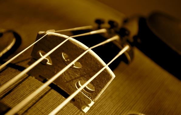 Обои скрипка рабочего стола 7