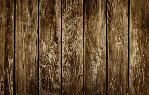 Картинка wall, wood, texture, brown, fence, palisade