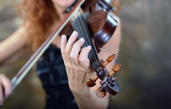 Картинка музыка, фон, скрипка