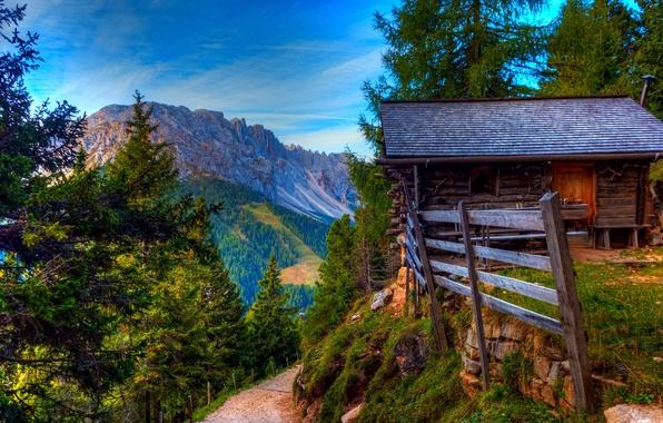 Картинка дорога, лес, небо, трава, облака, деревья, горы, природа, дом, камни, colors, весна, colorful, house, grass, …