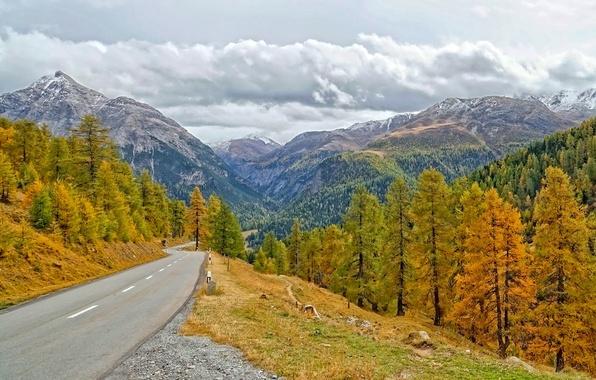 Картинка дорога, осень, лес, деревья, горы, Швейцария, кантон Граубюнден, Alvaneu Dorf