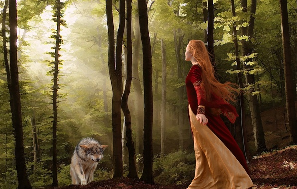 Картинка лес, девушка, волк, ситуация