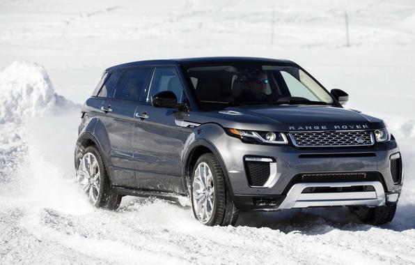 Картинка car, внедорожник, Land Rover, Range Rover, автомобиль, передок, Evoque, suv, Autobiography