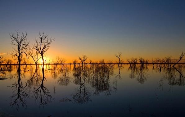 Картинка небо, вода, деревья, закат, отражение, весна, вечер, разлив, половодье