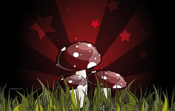 Картинка красный, зеленый, рисунок, смертельный, грибы, поганка. ядовитый, гриб, темный