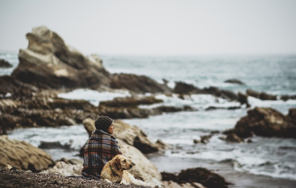 Картинка girl, storm, beach, sea, coast, dog, rocks, bokeh, cold, troubled sea