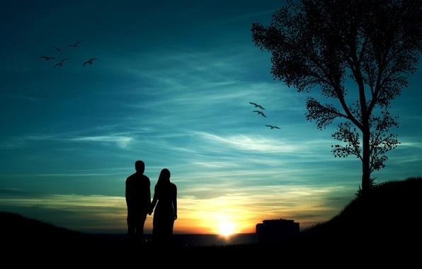 Картинка небо, девушка, солнце, закат, птицы, дерево, парень