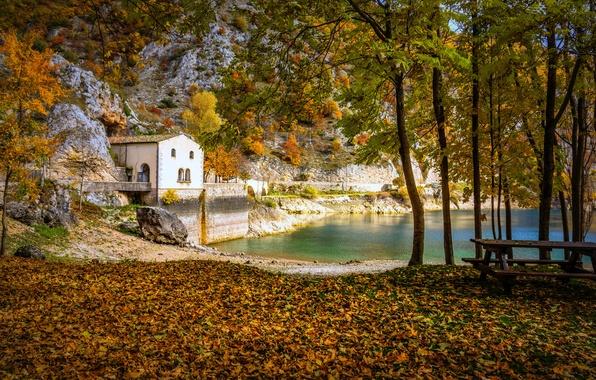 Картинка осень, лес, мост, озеро, дом, парк, стол, скамья