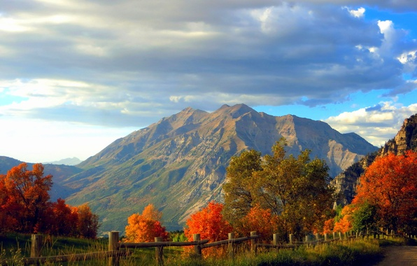 Картинка дорога, осень, лес, небо, трава, листья, облака, деревья, горы, природа, скалы, colors, colorful, grass, forest, …