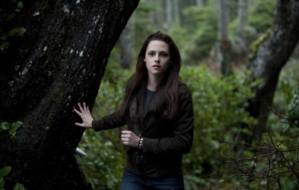 Картинка лес, кино, актриса, Kristen Stewart, сумерки