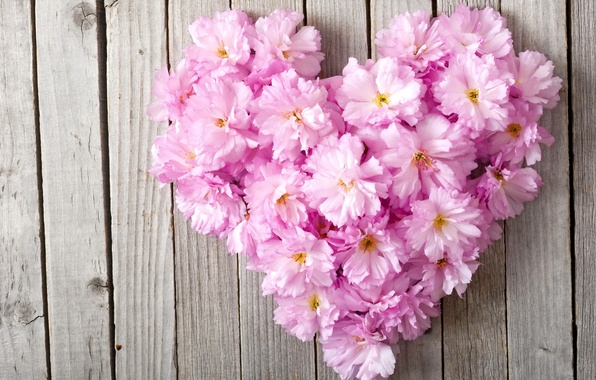 Картинка цветы, сердце, love, heart, pink, floral