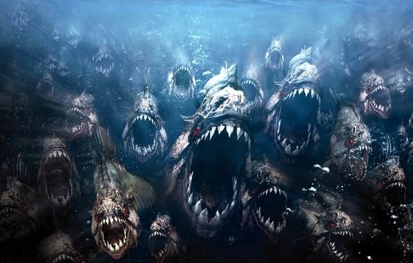 Картинка рыбки, злые, пираньи