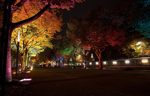 Картинка деревья, ночь, город, лампы, улица, Германия, освещение, подсветка, фонари, аллея, Берлин, ``Фестиваль света``