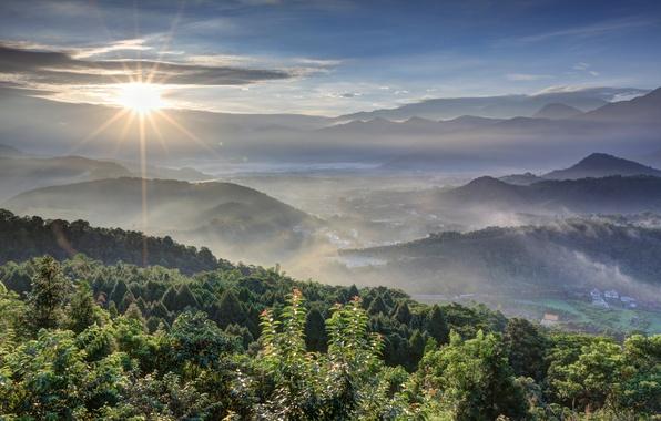 Картинка лес, небо, солнце, облака, лучи, деревья, горы, восход