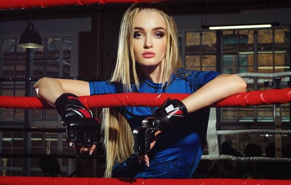 Картинка девушка, спорт, макияж, футболка, прическа, блондинка, бокс, перчатки, ринг, канаты, красивая, синяя, Kristiana Koroleva