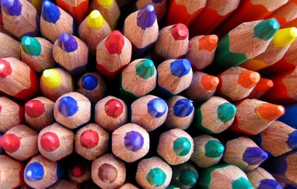 Картинка цвет, карандаши