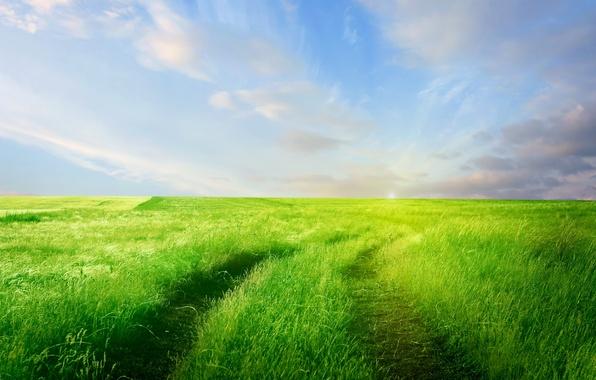 Картинка дорога, зелень, поле, небо, трава, облака, природа, горизонт