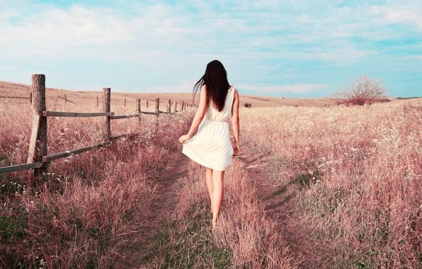 Картинка поле, трава, Девушка, платье, брюнетка, ножки